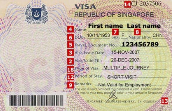 виза Employment Pass