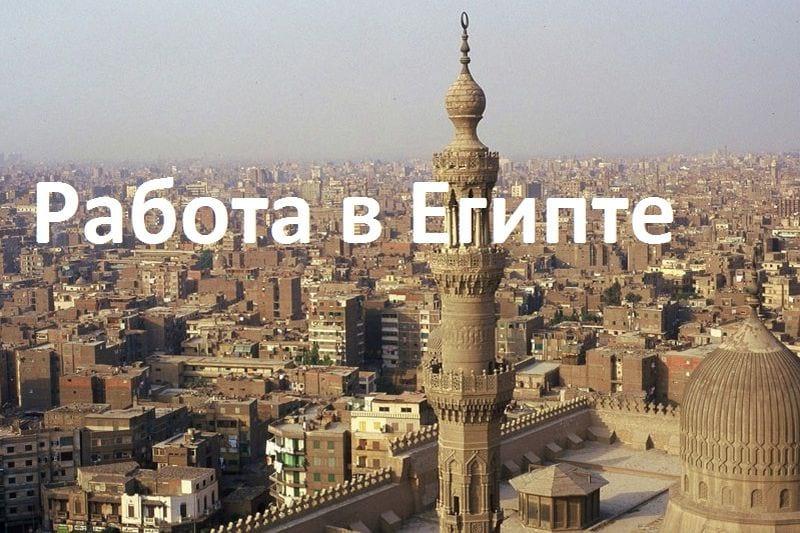 Средняя зарплата в египте