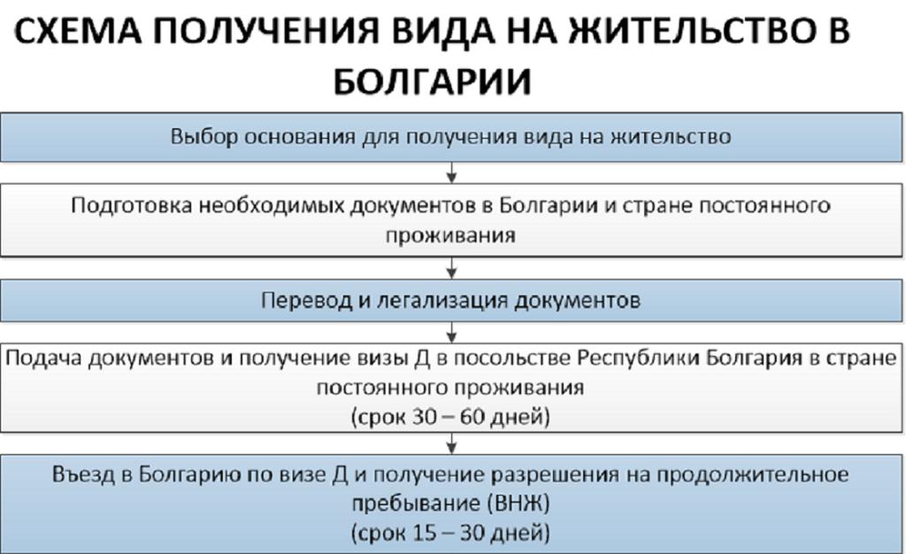 схема получения вида на жительство