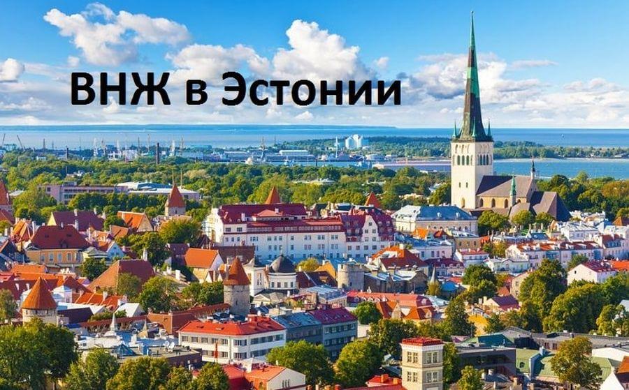 Как получить вид на жительство в Эстонии для россиян