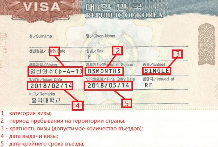 Студенческая виза D4 в Южную Корею