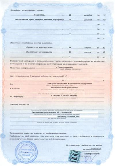 Ветсвидетельство (форма 1)