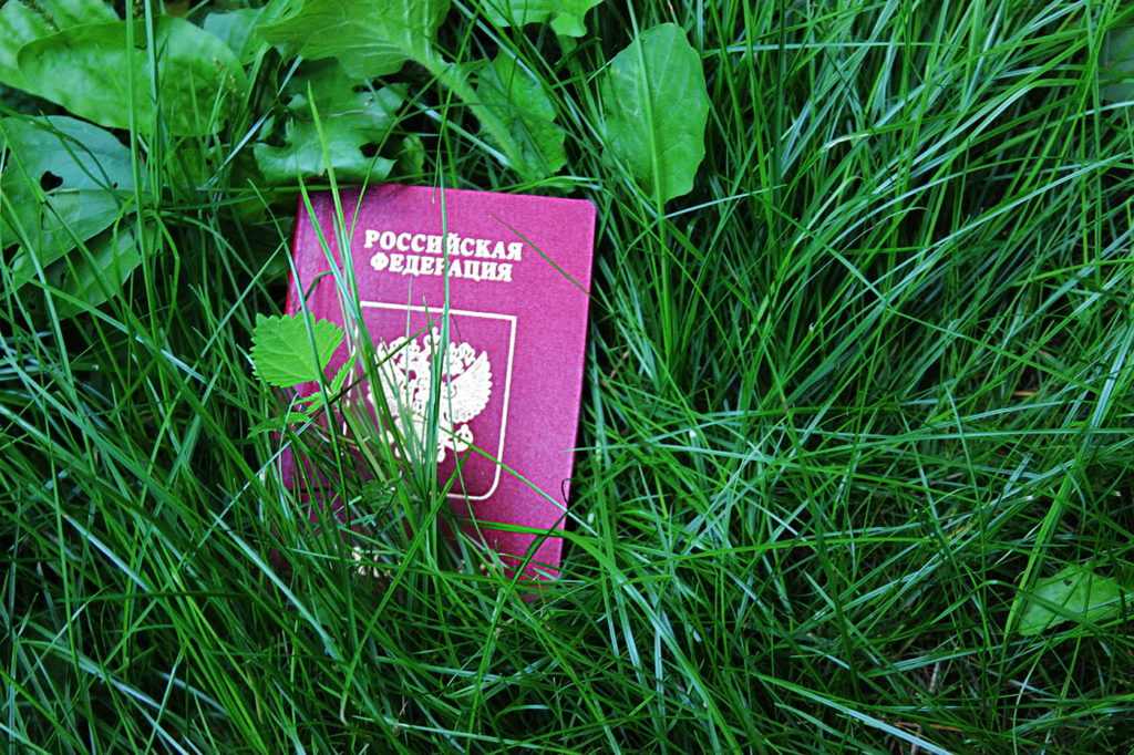 Потерянный паспорт на траве