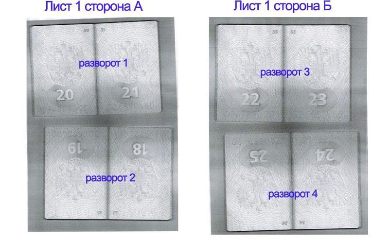 Копия страниц паспорта