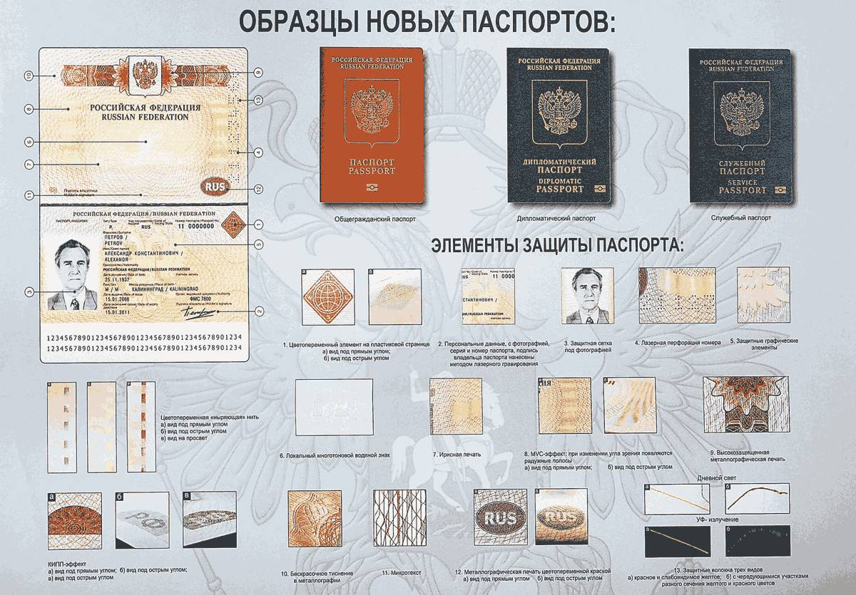 Биометрические заграничные паспорта РФ