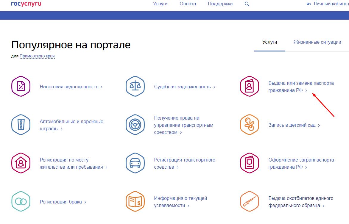 Интернет-страница Госуслуг